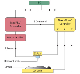 AFM block diagram